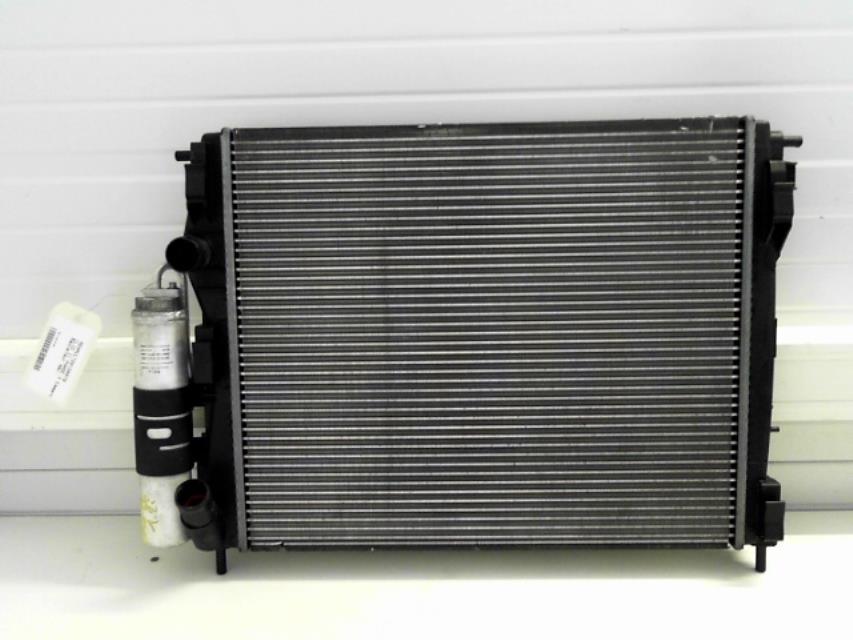 radiateur eau renault clio ii phase 4 essence. Black Bedroom Furniture Sets. Home Design Ideas