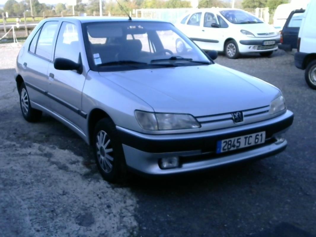 Barillets de portes pour Peugeot 306